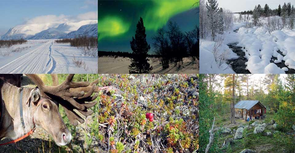 Dixon Nature Holidays sponsor VNF